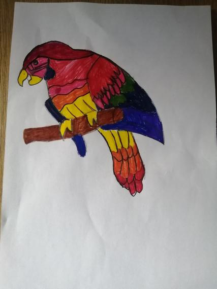 Tobia's parrot