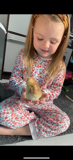 Lexi is giving the chicks lots of cuddles!