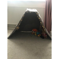 Willow made a camp in her living room