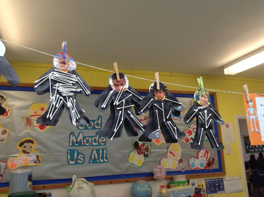 Our 'Funnybones' skeletons.