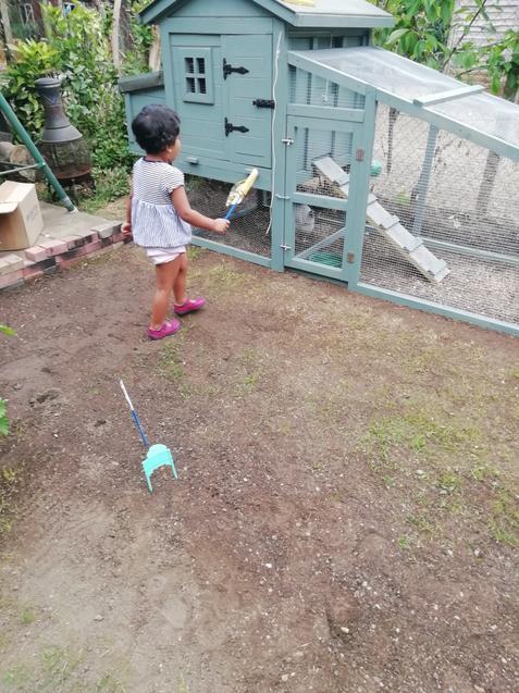 Cecilia's new hen house