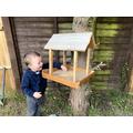 Wow - what a super bird house Alex!