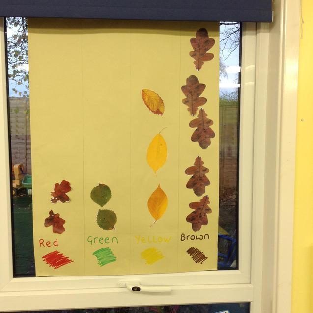 Our Leaf Colour Graph