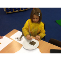 We all had to have a go at making brown!