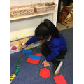Guntaas explores with 2D shapes