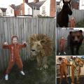 Google animal adventures