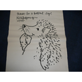 Nick Butterworth's hedgehog.