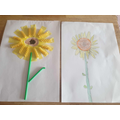 Finley's sunflowers inspired by Van Gogh