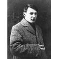Pablo Picasso - Portrait artist