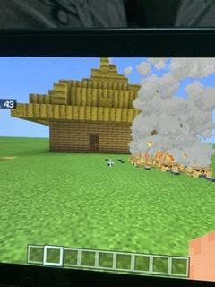 Georgie used Minecraft to recreate an anglo saxon house!