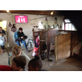 We learnt that a Freisian cow is good for milk.