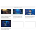 Something Fishy Story Board - Vidhi