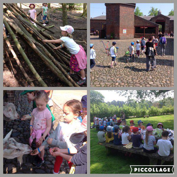 Reception made a visit to Tatton Farm