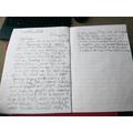 Avanish's VE day diary extract