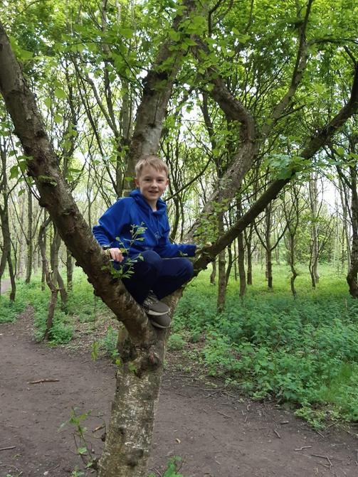 James climbing a tree