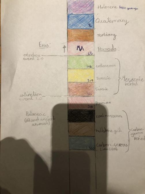 Zoe's Geology Timeline