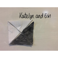 Katelyn and Evie rearranged the shaded parts