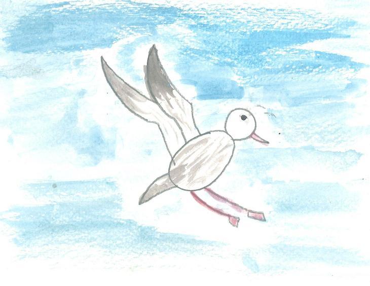 Gull - by Mariam