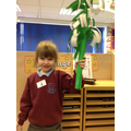 Making our palm leaves.