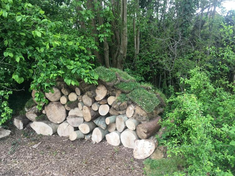 Completed Log Pile