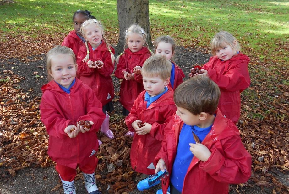 Conkers were dropping from the trees.