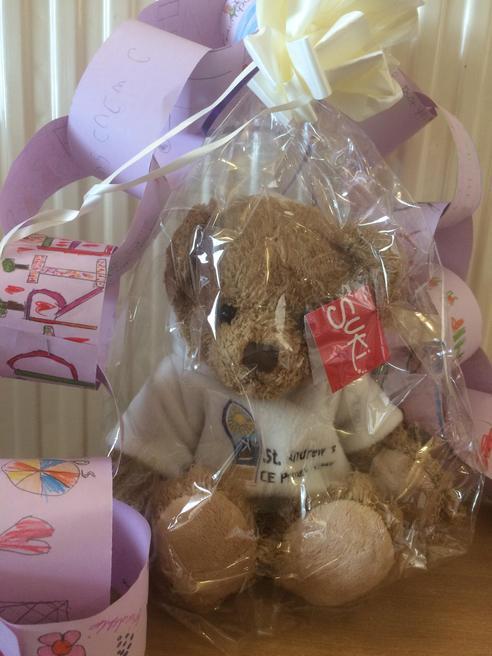 Our special DSAT teddy bear.