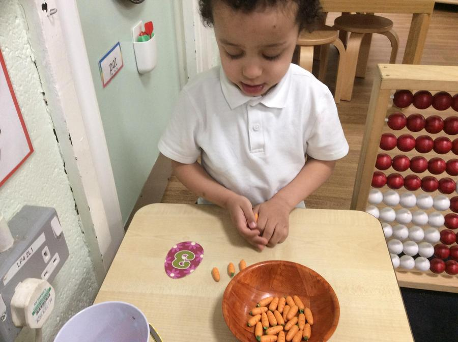 Raphael counted out some carrots to match the number eggs.