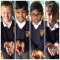 Creepy crawlies!