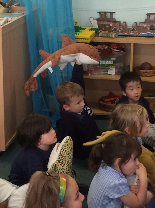 We loved learning the names of each shark!