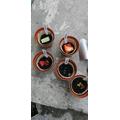 Aidan's seeds- will they grow?