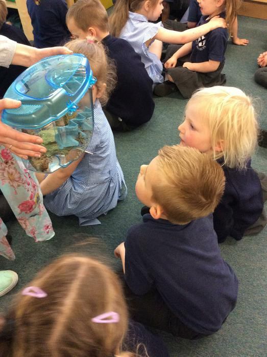 Mr Gill brought in a special tank to show us.