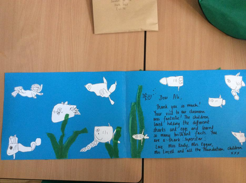 ..so we each drew our own shark and made a card!
