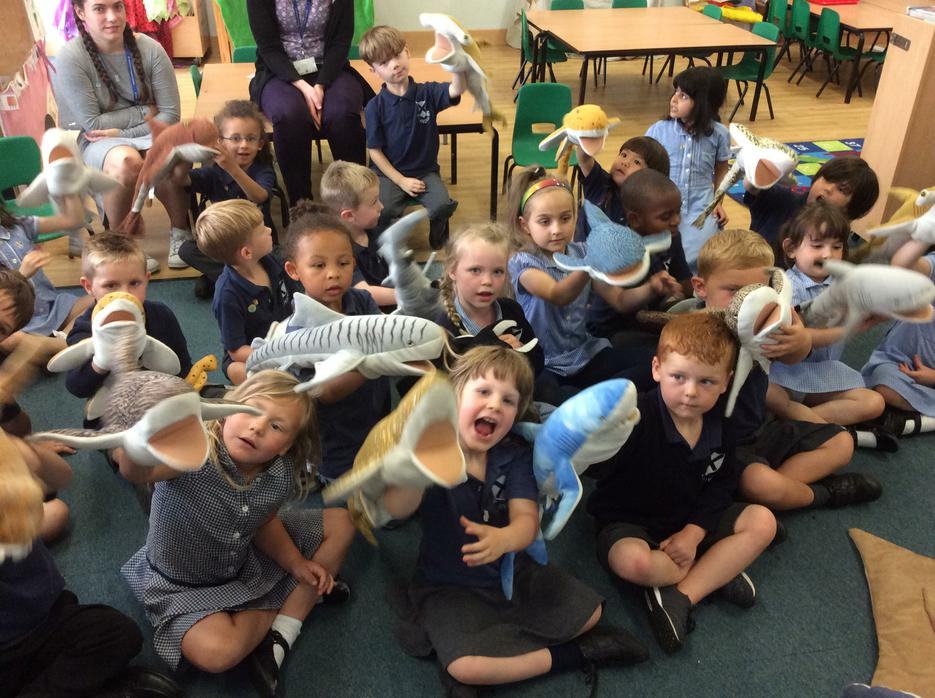 We each had a cuddly shark or ray to hold!