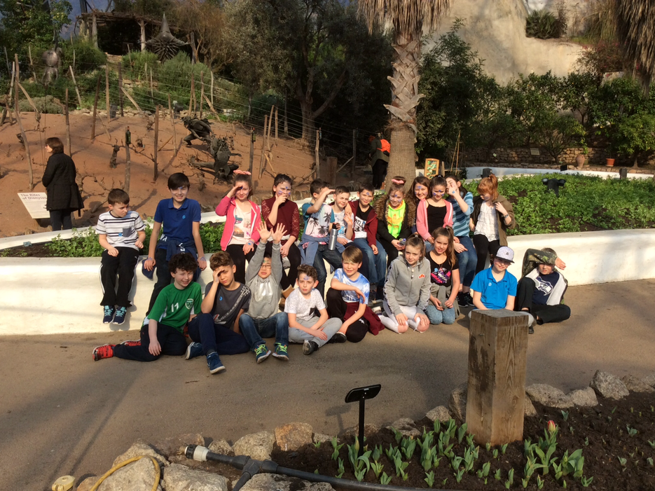 Year 6 at the Eden Project