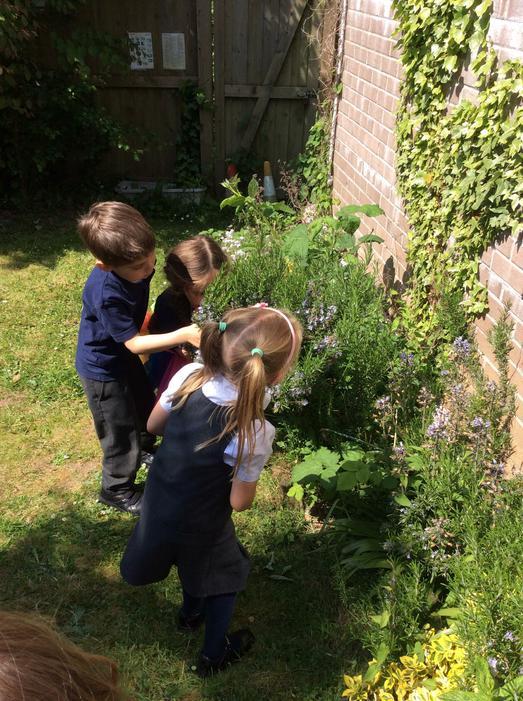 We had fun exploring the nature garden.