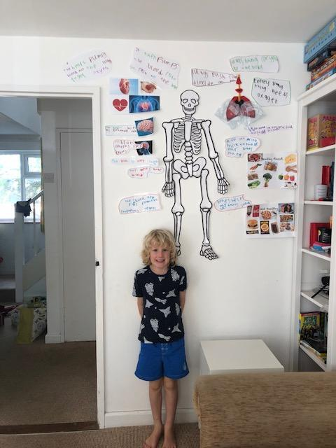 Look at all of George's learning- great skeleton!