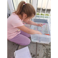 Kyra-Leigh investigating floating and sinking