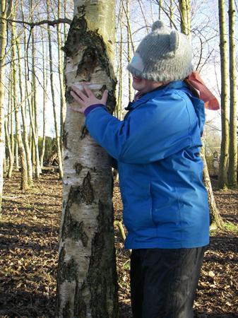 Identifying a tree