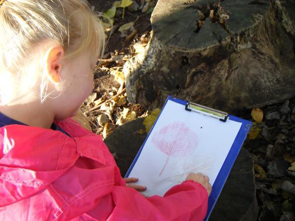 18.11.14 Leaf rubbing