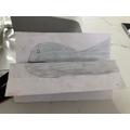 Harry`s magic fish 1