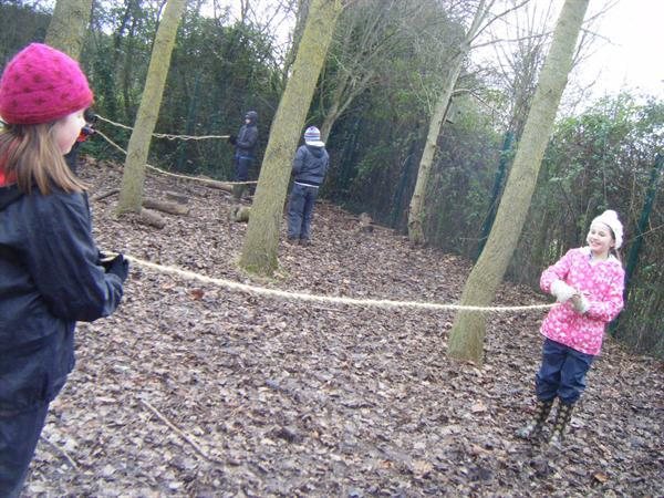 Creating a timber hitch