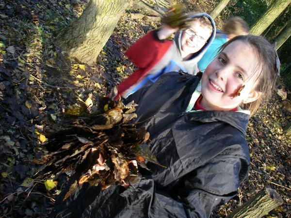 18.11.14 Leaf fight