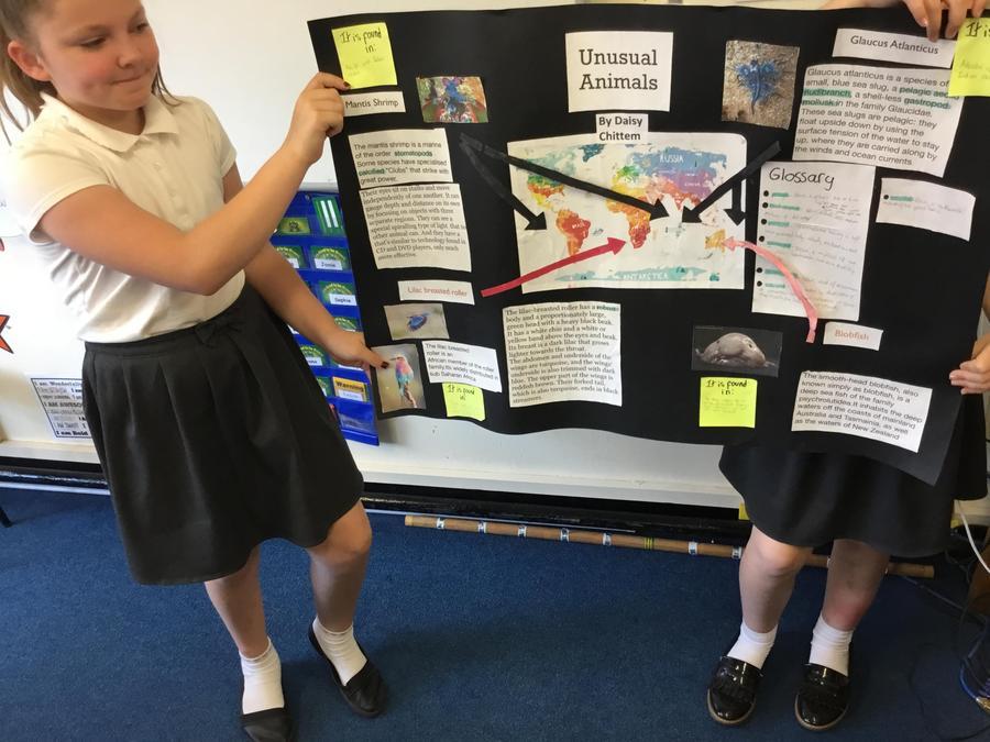 Daisy- a presentation on unusual animals