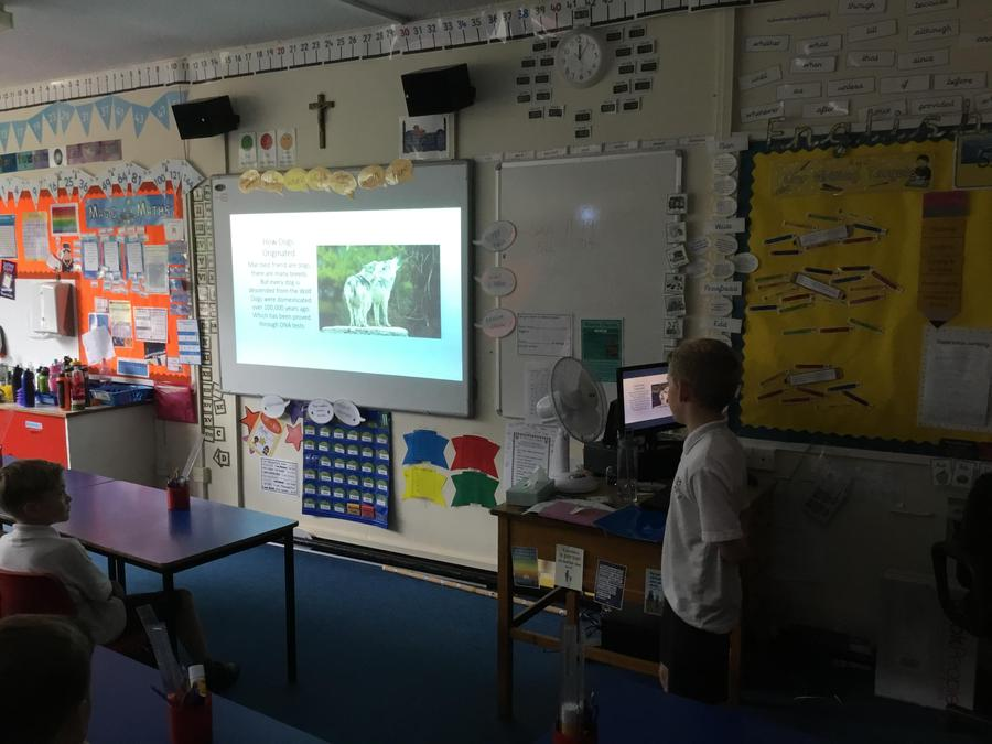 Aiden presenting his topic 'dogs'