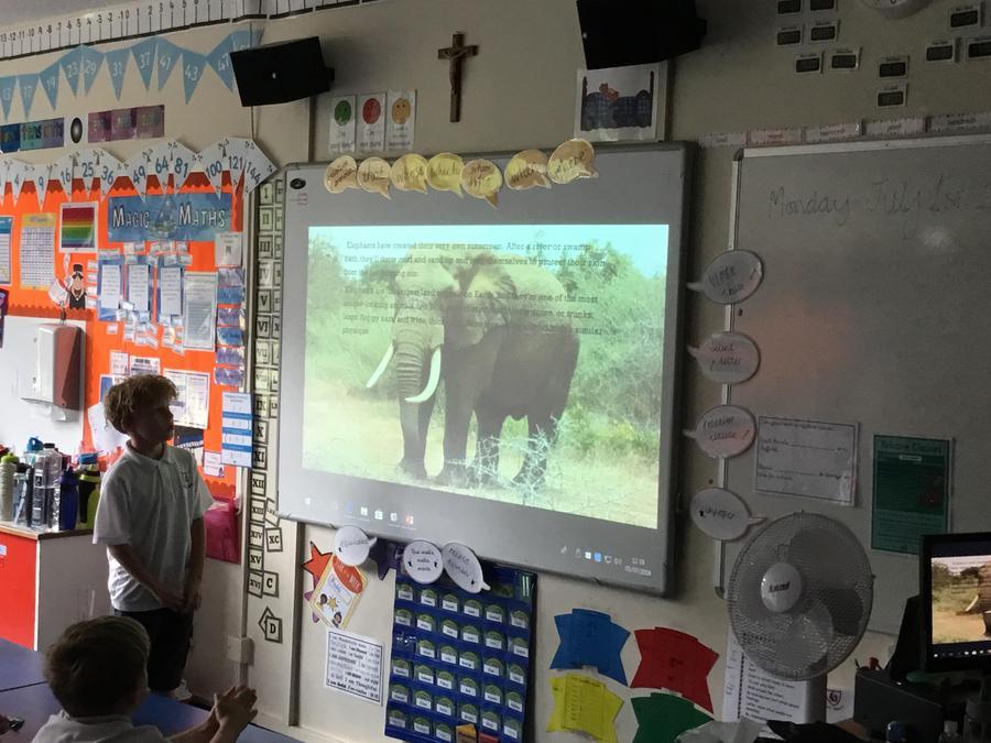 Mikolaj presenting 'elephants'