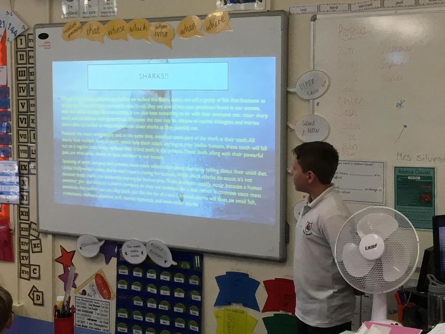 Oliver- A presentation on animals