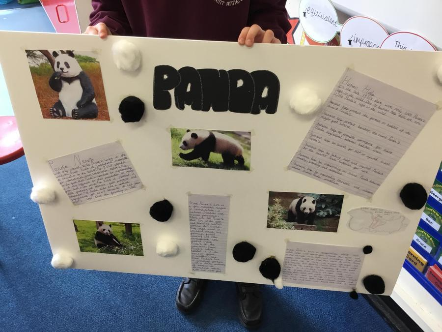 Kian- Information all about Pandas