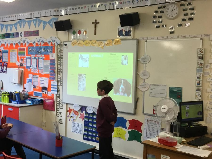 Luca- A presentation on animals