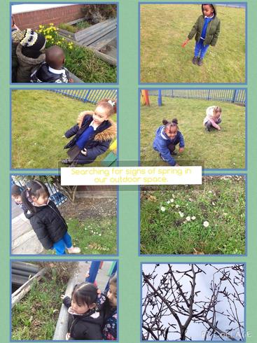 Searching for signs of spring in our environment.