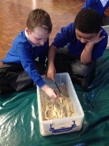 We found dinosaur bones and fossils.
